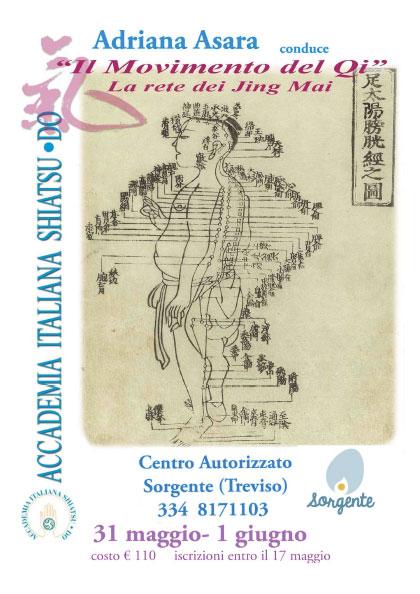seminari di shiatsu: il movimento del Qi